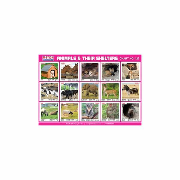 M-Stick Educational Chart 122 Animals & Their Shelters